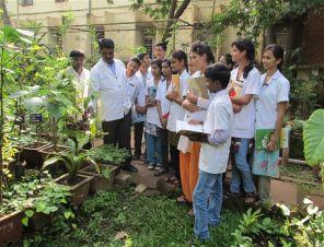 Herbal garden 3-296x226